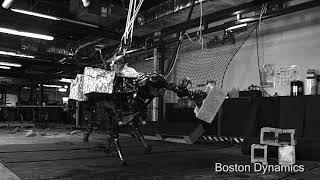 Robot Dynamic Robot Manipulation