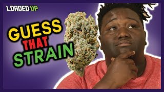 Guess That Weed Strain