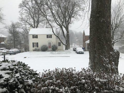 Snow in Arlington, VA