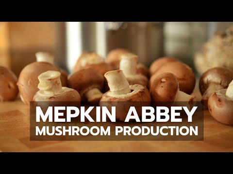 Mepkin Abbey Mushroom Production