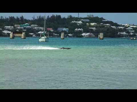 RC Boat Racing BDA. Mystic C5000 Twin Mod Zenoah's