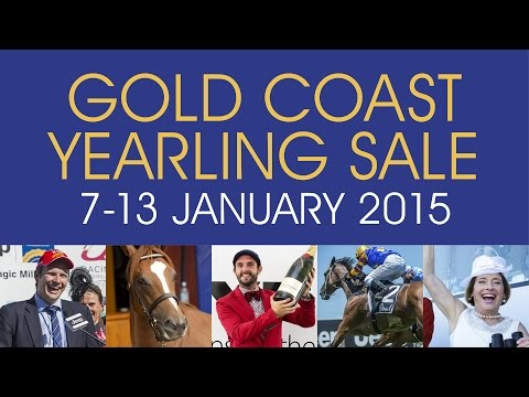 2015 Magic Millions Gold Coast Open House Racing Panel