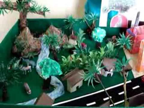 School Projects on Environment Primary School Project on Save