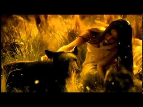 Akcent - 2012 Video I'm Sorry ( Radio edit ) HD