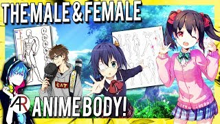 THE MALE AND FEMALE BODY AS PRESENTED IN ANIME   Anime Chat Cast