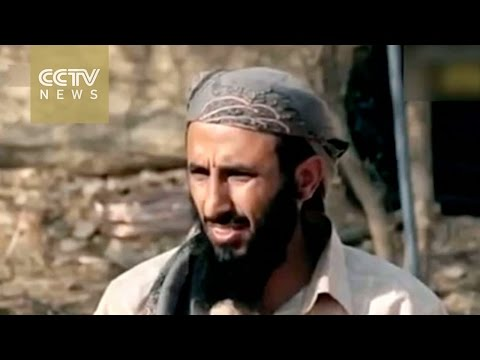 Top al-Qaeda leader reportedly killed by US drones
