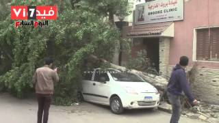 """بالفيديو..صاحب سيارة يحرر محضر بعد سقوط """"شجرة"""" عليه بالسيدة"""