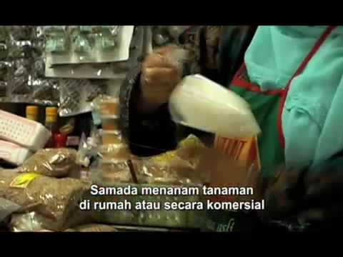 'The Tree' by Amir Muhammad - Malay Subtitles - 15Malaysia