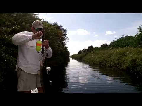 Snakehead Fishing Palm Beach County, Florida with Captain Sh