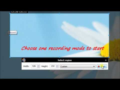 The Best Screen Video Capture - Capture Screen Video for Free