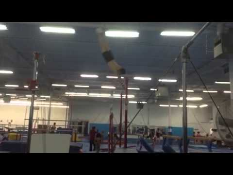 Men's Gymnastics Program