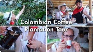 Colombian Coffee Plantation Tour | Medellin, Colombia | Evan Edinger Travel Vlogger