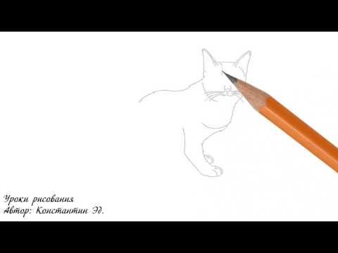 Девушка в профиль рисунок карандашом поэтапно