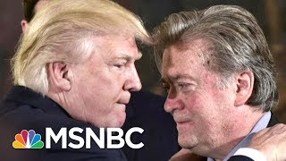 Steve Bannon Uniquely Odd Among Donald Trump's Many Weird Staff Choices | Rachel Maddow | MSNBC