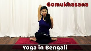 Gomukhasana For Beginners and Its Benefits | Cow Face Pose | Yoga Weight Loss | Bangla Yoga Video