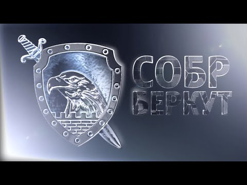 Специальный отряд быстрого реагирования СОБР «Беркут» ГУ МВД России по Краснодарскому краю