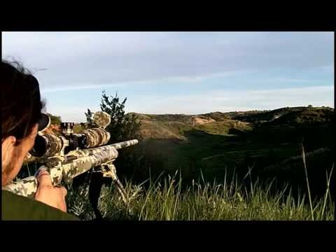 .243 Win VS 7mm Rem Mag @ 649 yds - Rex Reviews