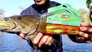download lagu Worst Lure Fishing Challenge Ft. Jon B. gratis