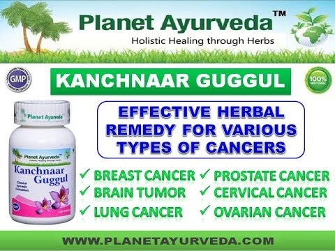 Kanchnar Guggul Benefits- Ayurvedic Medicine for Cancer Treatment