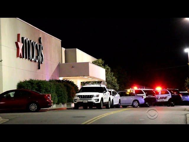 Stabbing spree in Minnesota mall leaves several injured