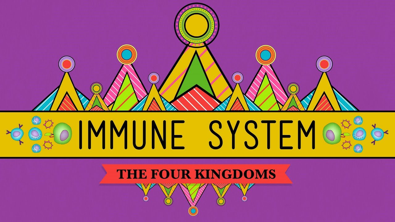Your Immune System Natural