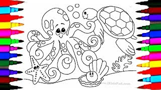 Learn Colors L Ocean Coloring Pages For Kids Octopus Seashells Stars Turtle Picture Baby