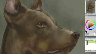 How to Paint a DOG