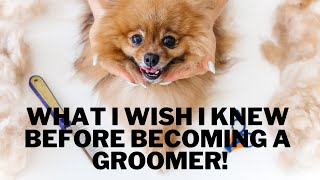 What I Wish I Knew BEFORE Becoming a PET GROOMER