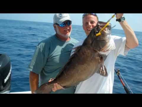florida keys fishing. Florida Keys Fishing Sailfish,