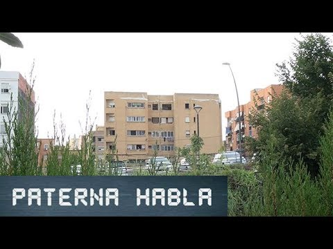 Video: Paterna HABLA de la Finca amarilla, ¿en qué situación se encuentra?