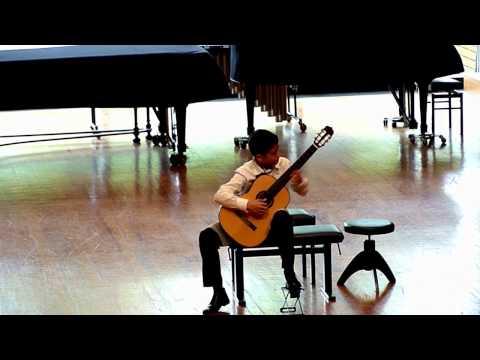 Carlo Domeniconi: Koyunbaba IV mov. - Vidak Micovic (1999), guitar
