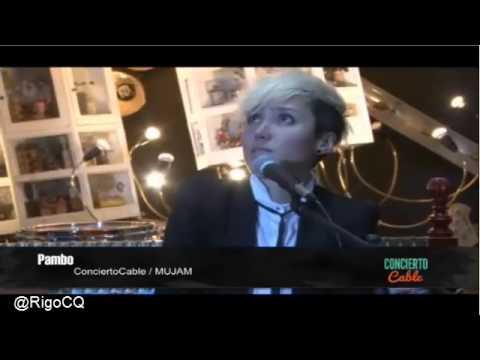 PAMBO en show acustico concierto cable