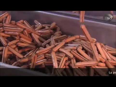 Un vistazo al proceso de produccion y fabricacion de las Salchichas