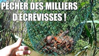 Pêcher des MILLIERS d'Écrevisses Facilement ! - Marius Chasse