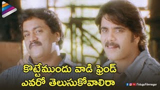 Nagarjuna STYLISH Fight Scene | BOSS I Love You Telugu Movie | Sunil | Nayanthara | Shriya Saran