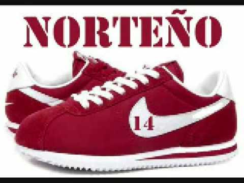 Nortenos Raza Gang 14 Video