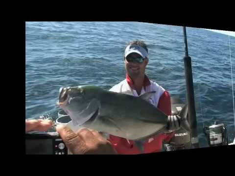 Paradise fishing lodge panama fishing lodges hotels for Panama fishing lodge