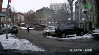 close call with falling tree   taking out trash