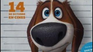 """""""Ozzy""""Chú chó vượt ngục-phim hoạt hình phiêu lưu hấp dẫn nên xem"""