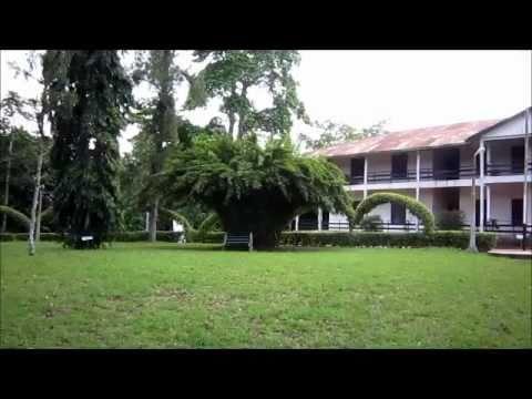 Redeemtours - Aburi Botanical Gardens Ghana.