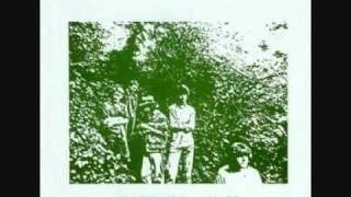 Watch Camper Van Beethoven Sometimes video
