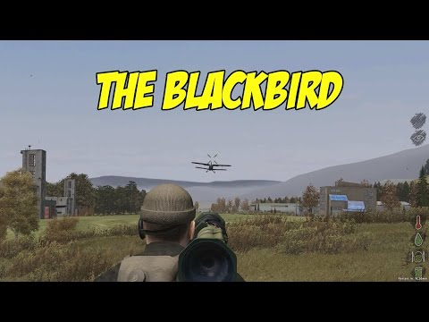 ARMA 2 DAYZ - THE BLACKBIRD