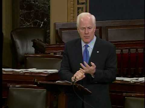 Sen. Cornyn Speaks in Support of His Border Security Amendment 5-27
