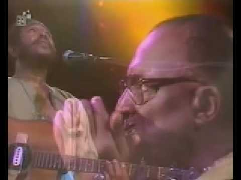 Sonny Terry&Brownie McGhee: Walk On