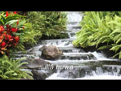Despierta Mirabai Ceiba