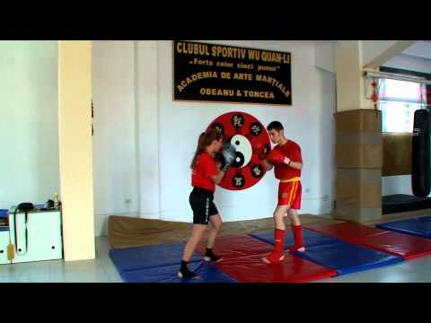 Wu Quan Li Xanda Sanshou training Image 1