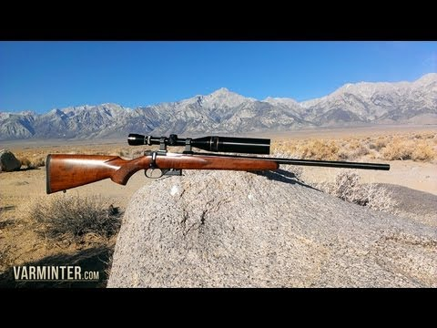 A Review and Hunt with the CZ Model 527 in .17 Hornet - Part One