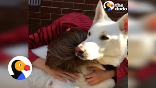 Kid Reunites With His Favorite Dog | The Dodo