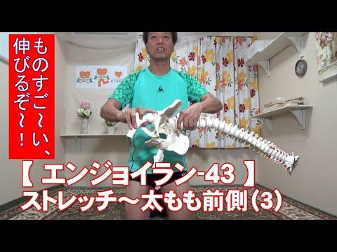 #43 太もも前側(3)/筋肉痛改善ストレッチ・身体ケア【エンジョイラン】