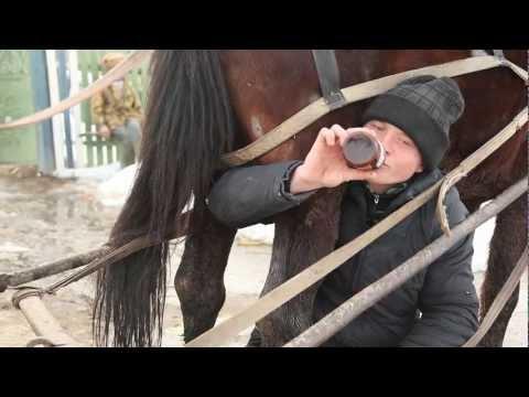 Cum beau moldovenii bere